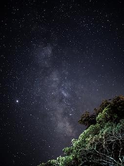 Krajobraz gwiaździstej nocy i drogi mlecznej