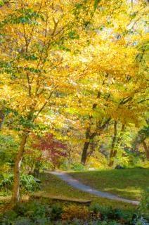 Krajobraz jesień krajobraz