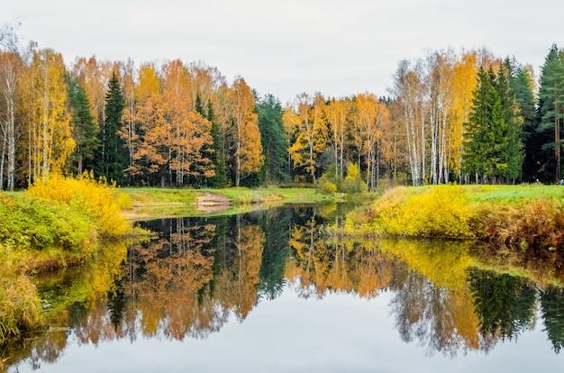 Krajobraz jesienią odbicie krajobrazu lasu w jeziorze.