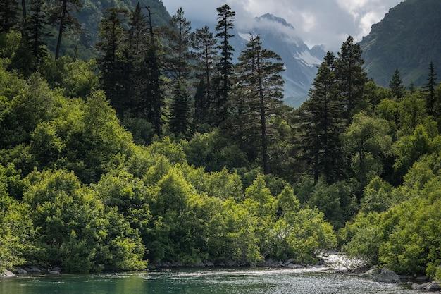 Krajobraz jeziora górskiego lasu. jeziora północnego kaukazu, dombai, baduk