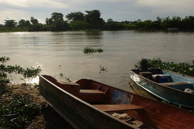 Krajobraz jeziora z namorzynami i drewnianymi łodziami rybackimi o zmierzchu