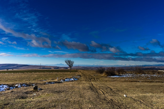 Krajobraz kakheti z górą kaukazu na horyzoncie