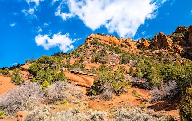 Krajobraz kanionów kolob w parku narodowym zion - utah, stany zjednoczone