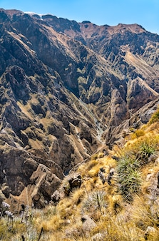 Krajobraz kanionu colca w peru, jednego z najgłębszych kanionów na świecie