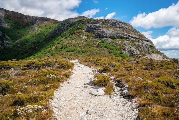 Krajobraz kolebkowej góry tasmanii