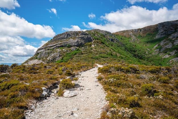 Krajobraz kołysankowy halny tasmania, australia.