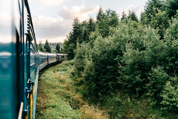 Krajobraz l widok przez okno z jazdy pociągiem wśród letniej przyrody