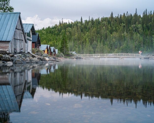 Krajobraz las i domy odbija na jeziorze zakrywającym mgłą pod chmurnym niebem