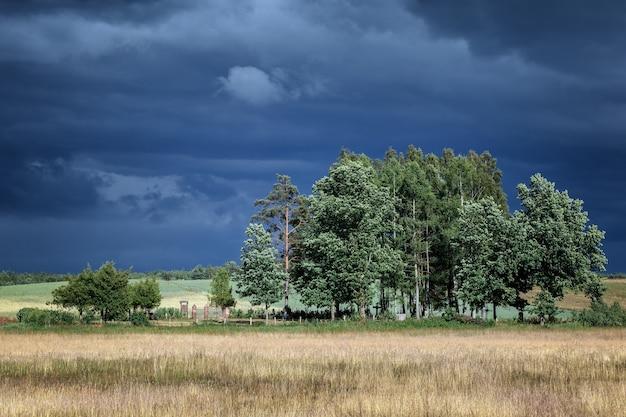 Krajobraz litewskiego starego cmentarzyska z ponurym niebem przed burzą