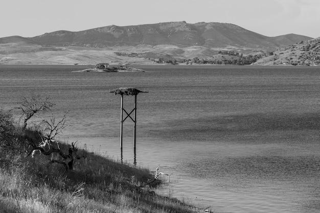 Krajobraz na bagnach alcantara. estremadura. hiszpania.