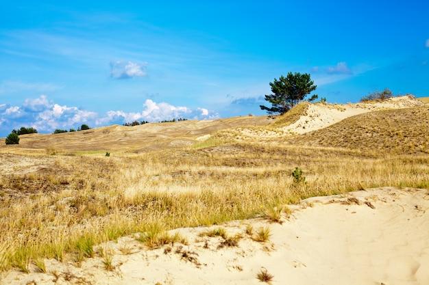 Krajobraz na mierzei kurońskiej