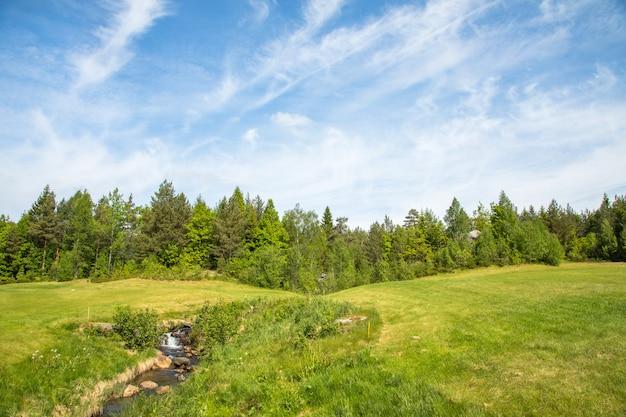 Krajobraz na polu golfowym z zieloną trawą, lasem, drzewami, pięknym niebieskim niebem i małą rzeką i wodospadem