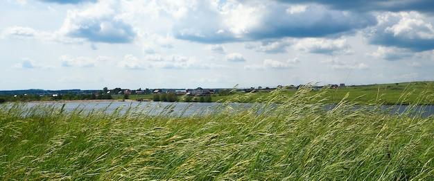 Krajobraz naturalny, łąka z wysoką trawą, w poprzek wioski rzecznej.