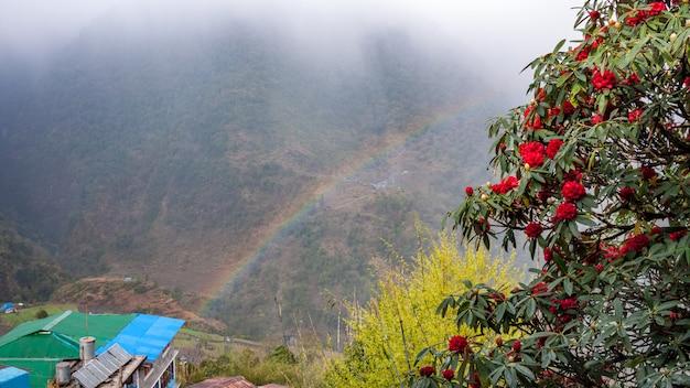 Krajobraz nepalski po deszczu