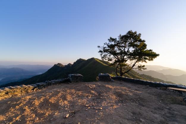 Krajobraz nowy widoku punktu skłon, wysoki szczyt przy pha blaszecznicą, chiang rei tajlandia.