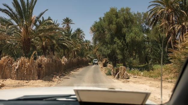 Krajobraz oazy chebika na saharze. samochód wjeżdża na palmy