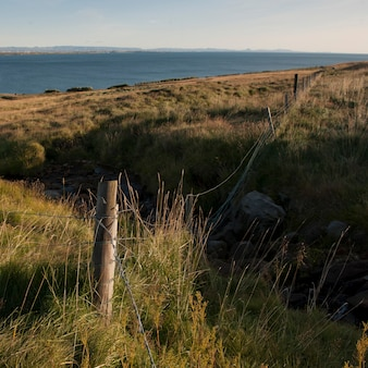 Krajobraz, pastwiska wzdłuż wybrzeża, z ogrodzeniem z drutu i wpustem
