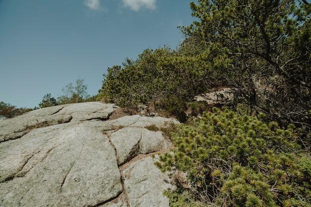Krajobraz pełen skalnych formacji