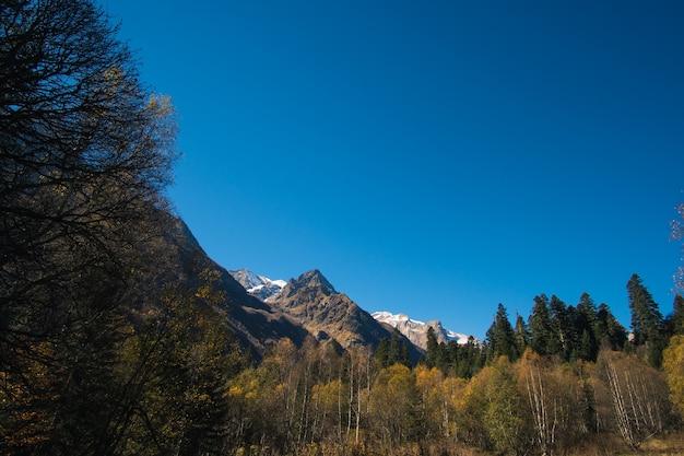 Krajobraz piękne góry z lasem i sosnami i błękitnym niebem z promieniami słonecznymi i pasemkami na kaukazie w rosji wieś dombay