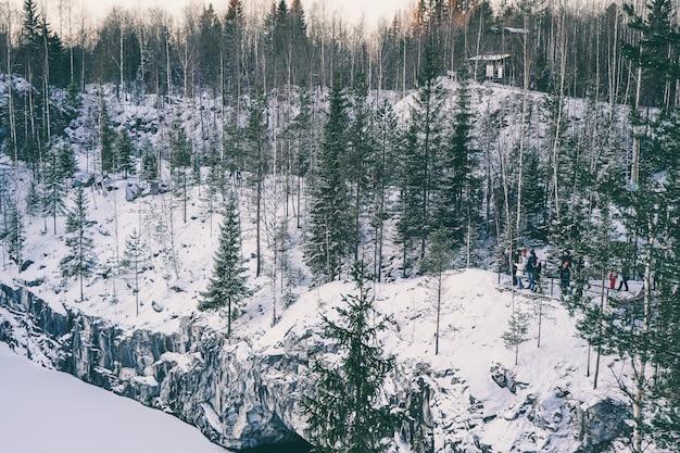 Krajobraz pięknego zimowego lasu. słoneczny poranek w zimowym lesie. śnieżny cichy kanion