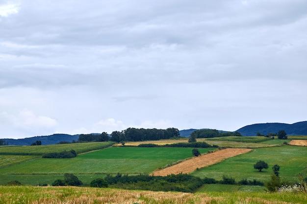 Krajobraz pól otoczonych wzgórzami pokrytymi zielenią pod zachmurzonym niebem