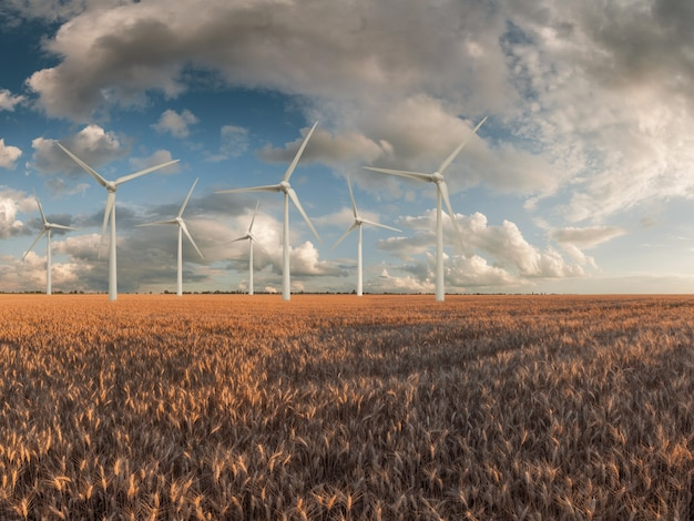 Krajobraz przemysłowy z turbinami wiatrowymi w terenie, odnawialna energia ekologiczna, wiatraki elektryczne