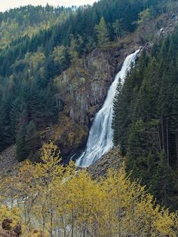 Krajobraz, przyroda norwegii, wysoki wodospad espelandsfossen w lesie jesienią.