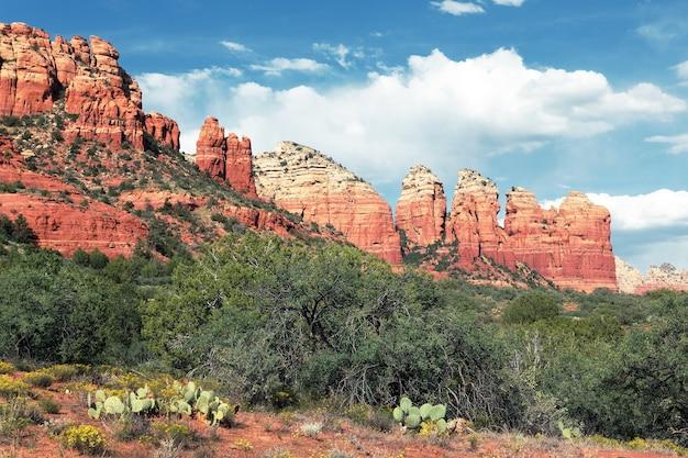 Krajobraz pustyni w pobliżu sedona w stanie arizona