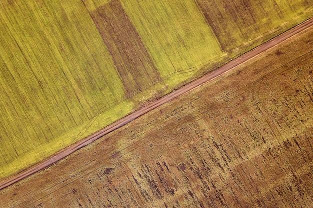Krajobraz rolniczy z powietrza. prosta wąska droga gruntowa między słonecznymi zielonymi i brązowymi polami.