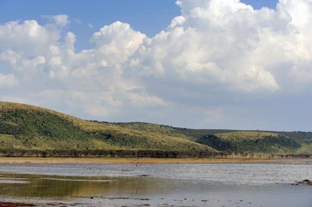 Krajobraz sawanny w parku narodowym kenii, afryka