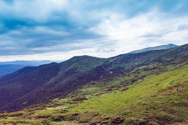 Krajobraz składający się z gór karpat z zieloną trawą