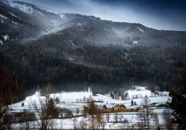 Krajobraz śnieżycy nad austriackimi alpami porośniętymi lasem