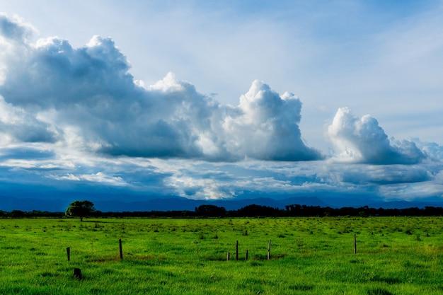 Krajobraz ujęcie pięknych chmur na błękitnym niebie nad zieloną łąką