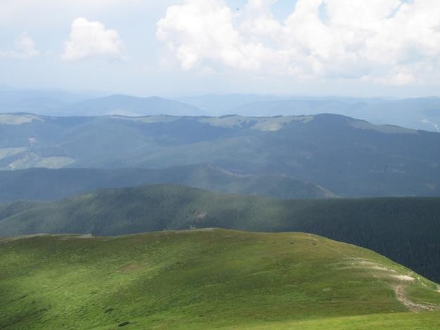 Krajobraz w górach. zielona trawa