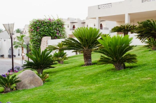 Krajobraz w hotelu territori w sharm el sheikh, egipt