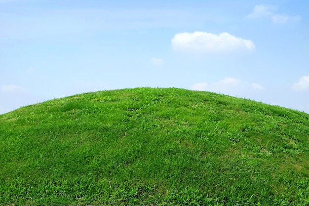 Krajobraz w tle, zielona trawa i błękitne niebo