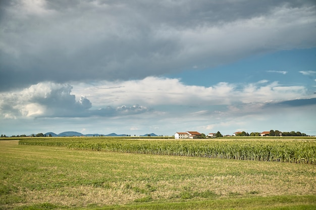 Krajobraz wiejski odsprzedany na poziomie gruntu, gdzie można zobaczyć pozostałości świeżo wymłóconej kultury, niebo i chmury, a na dole typowy wiejski dom w północnych włoszech.