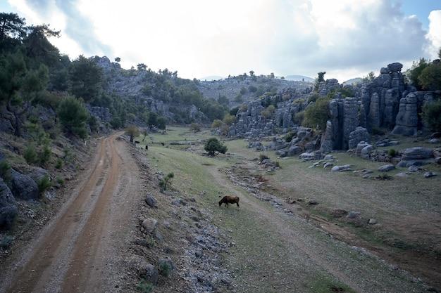 Krajobraz wiejski z malowniczymi formacjami skalnymi