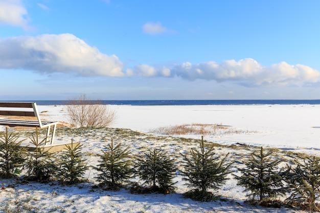 Krajobraz wybrzeża morza bałtyckiego zimą z pięknymi chmurami i błękitnym niebem w słoneczny dzień, woda i kamienie, pokryte śniegiem i lodem. ławka i małe choinki na plaży. kurzeme. łotwa. europa