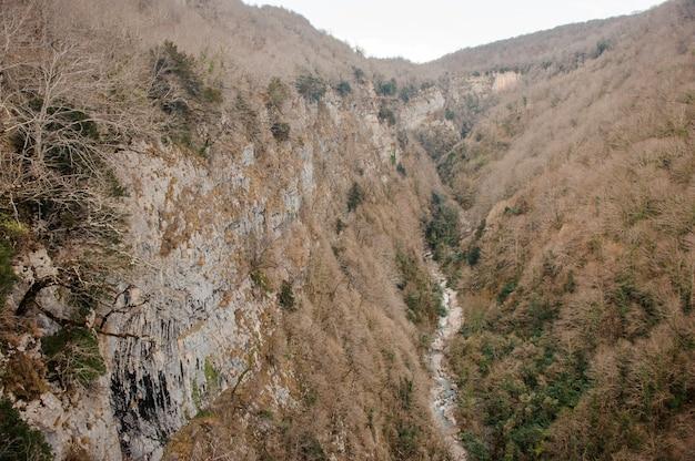 Krajobraz wysokich gór porośniętych żółtymi drzewami i długą rzeką