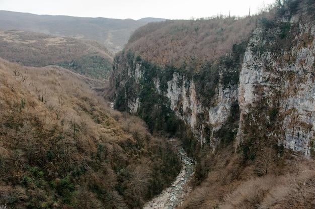Krajobraz wysokich gór porośniętych żółtymi i zielonymi drzewami z długą rzeką