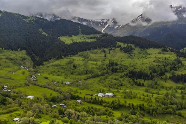 Krajobraz wzgórz pokrytych lasami i mgłą pod zachmurzonym niebem