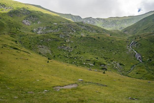 Krajobraz wzgórz pokrytych trawą i drzewami pod zachmurzonym niebem
