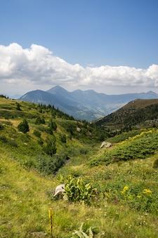 Krajobraz wzgórz pokrytych zielenią z górami skalistymi pod pochmurnym niebem