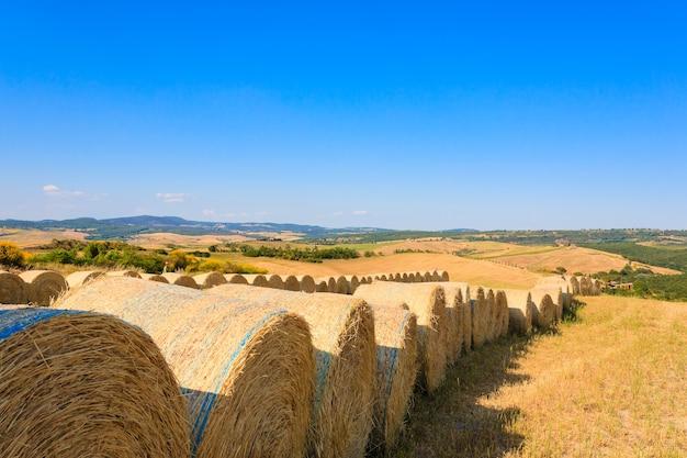 Krajobraz wzgórz toskanii, włochy. wiejska włoska panorama.