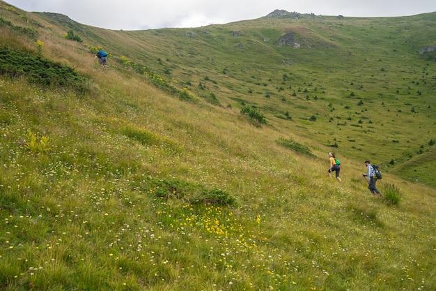 Krajobraz wzgórza pokrytego zielenią, na który wspinają się turyści pod zachmurzonym niebem