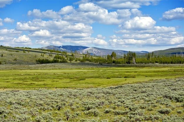 Krajobraz yellowstone