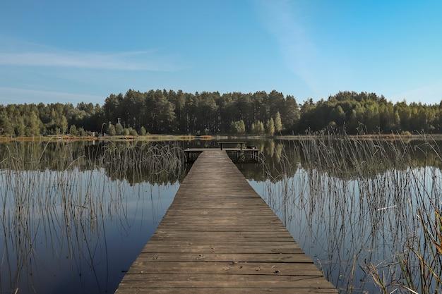 Krajobraz z drewnianym długim pomostem lub molo w perspektywicznym lesie nad jeziorem na horyzoncie i bezchmurne niebo latem