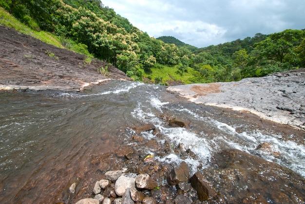 Krajobraz z drzewami gór i rzeką z przodu