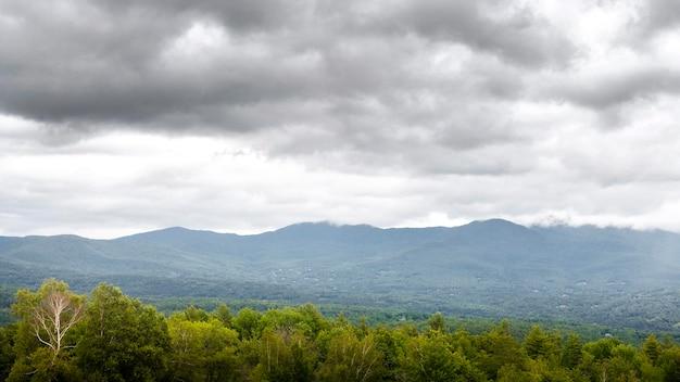 Krajobraz z drzewami i górami